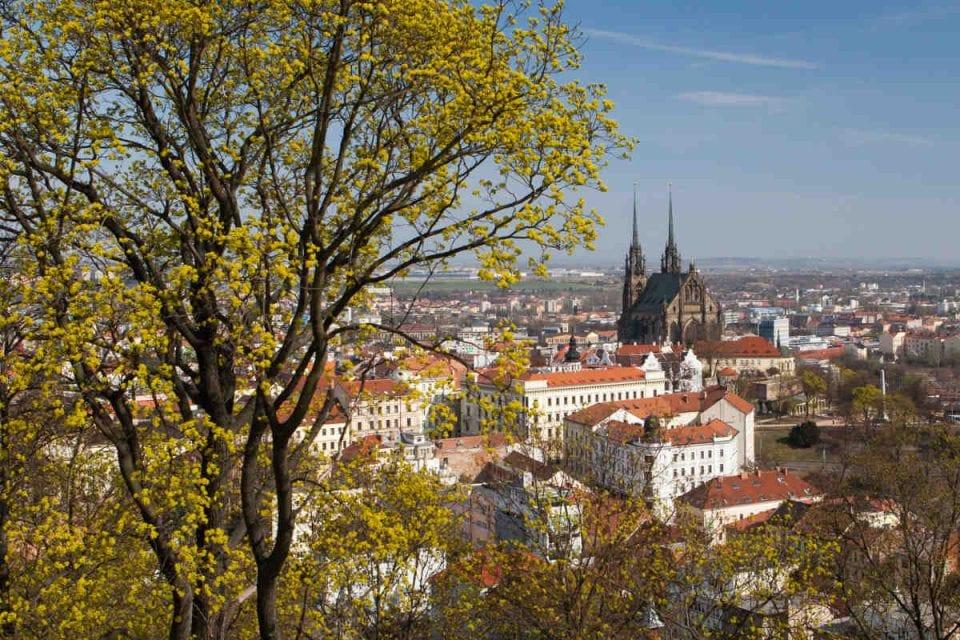 Brno Masaryk Üniversitesi